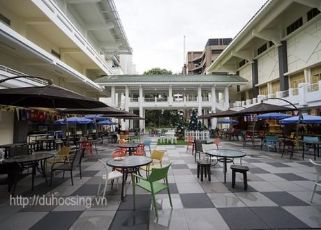 Cơ hội học tập tại JCU Singapore cho những bạn học lực cấp 3 không cao