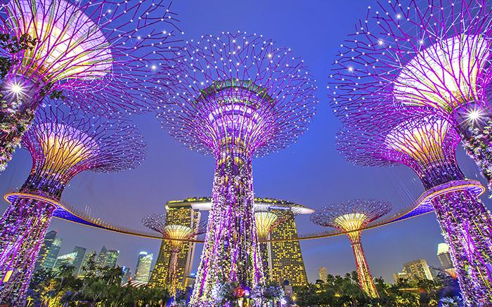 rao-can-du-hoc-singapore