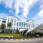 Tuần lễ tư vấn: Tìm hiểu các ngành đào tạo chuẩn quốc tế tại Học viện SIM Singapore
