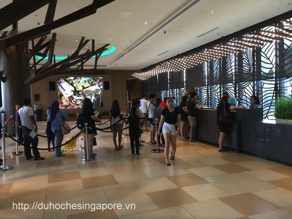 du-hoc-he-singapore-2017-3