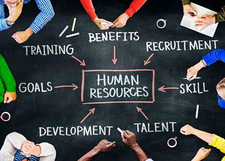 3 lý do bạn nên học ngành quản trị nhân sự tại Singapore