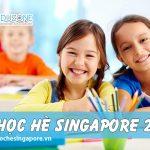 Năm 2019, Eduzone có những tour du học hè Singapore nào?