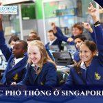 Tư vấn học phổ thông ở Singapore cho học sinh học hết lớp 8 ở Việt nam