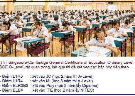 Kỳ thi Singapore Cambridge O-Level Examination