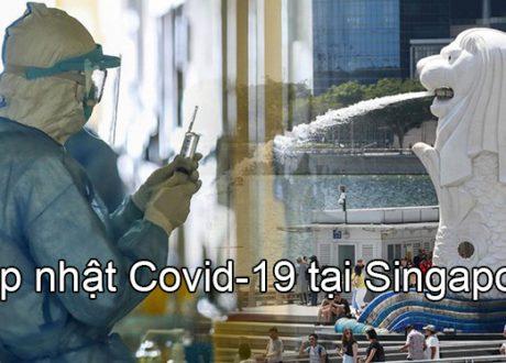 Cập nhật tình hình Covid tại Singapore và chính sách nhập cảnh cho sinh viên